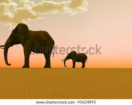 Elephants in a desert - stock photo