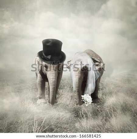 Elephants that who are getting married in twenties style - stock photo