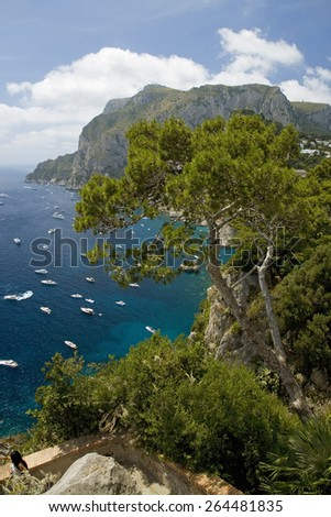 Elevated view of blue waters of the City of Capri, an Italian island off the Sorrentine Peninsula on the south side of Gulf of Naples, in the region of Campania, Province of Naples, Italy, Europe - stock photo