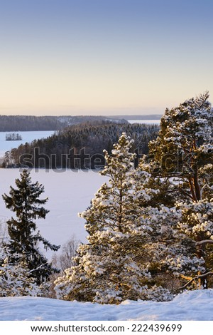 Elevated view of forests and frozen lake in winter evening light. The temperature is below -20 C creating a particular atmosphere