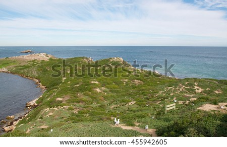 Elevated view of the Indian Ocean seascape and lush dunes at Penguin Island in Rockingham, Western Australia/Scenic Dune Views/Penguin Island, Rockingham, Western Australia - stock photo