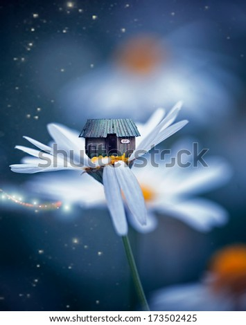 Elf house on the white flower,kind fantasy picture - stock photo
