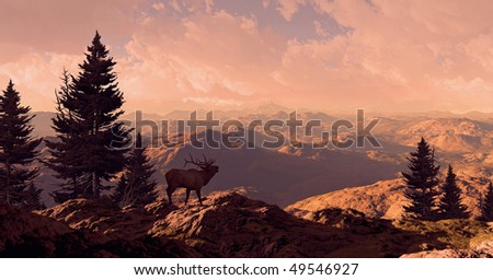 Elk In The Rocky Mountains - stock photo