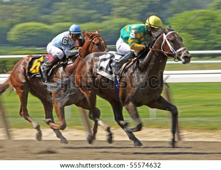ELMONT, NY - JUN 19: Aikenite (David Cohen up) holds off Shrewd One (Jorge Chavez up) to win an allowance race at Belmont Park on Jun 19, 2010 in Elmont, NY. - stock photo