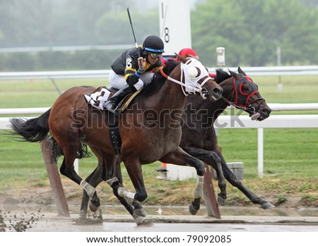 "ELMONT, NY - JUN 11: Jockey Alan Garcia (black cap) guides ""In Just We Trust"" to victory in a claiming race at Belmont Park on Jun 11, 2011 in Elmont, NY."