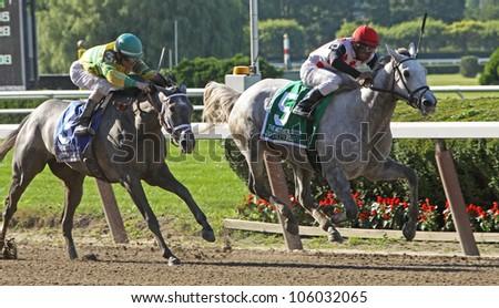 "ELMONT, NY - JUN 23: Rajiv Maragh and ""Zo Impressive"" win The Grade 1 Mother Goose Stakes at Belmont Park on Jun 23, 2012 in Elmont, NY. - stock photo"