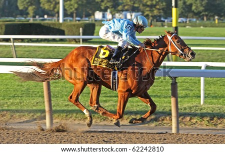 ELMONT, NY - OCT 2: Haynesfield (Ramon Dominguez up) is the wire-to-wire surprise winner of the Jockey Club Gold Cup Invitational at Belmont Race Track on Oct 2, 2010 in Elmont, NY. - stock photo