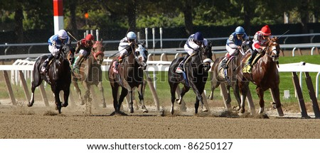 ELMONT, NY - OCT 8: The field heads down the homestretch in claiming race at Belmont Park on Oct 8, 2011 in Elmont, NY. Eventual winner is Economic Swoon (lead horse). - stock photo