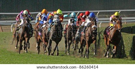 ELMONT, NY - OCT 8: The field takes the far turn in maiden claiming race at Belmont Park on Oct 8, 2011 in Elmont, NY. Eventual winner is Lemons to Lemonade (lead horse on right). - stock photo