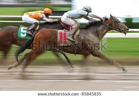 "ELMONT, NY - OCT 1: ""Yesterday's Story"" and jockey Ryan Curatolo (#11) compete in a claiming race over a muddy track at Belmont Park on Oct 1, 2011 in Elmont, NY. - stock photo"
