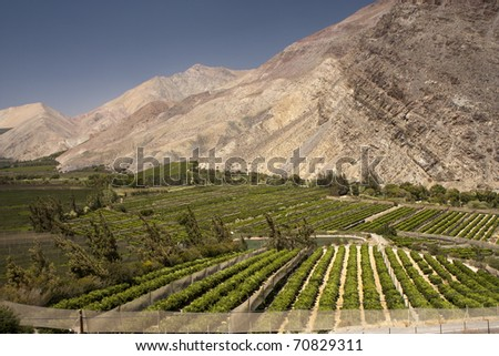 Elqui valley, Chile - fertile valley in inhospitable mountains - stock photo