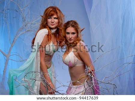 Elves in magical winter forest. - stock photo