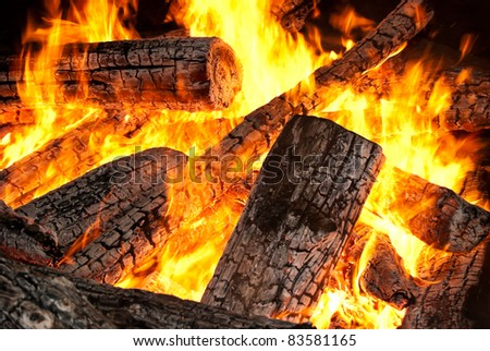 Embers charred in a flame of fire - stock photo