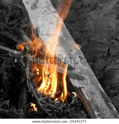 Embers texture, wood in fire texture