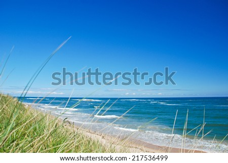 Embleton Beach focused behind grassy dunes