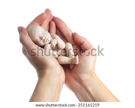 Embryo in woman hand - stock photo