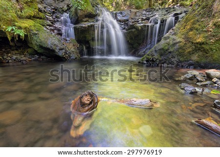 Emerald Falls with Driftwood along Gorton Creek in Columbia River Gorge National Scenic Area Oregon - stock photo