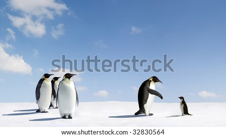Emperor penguin reaches out to Adelie penguin - stock photo