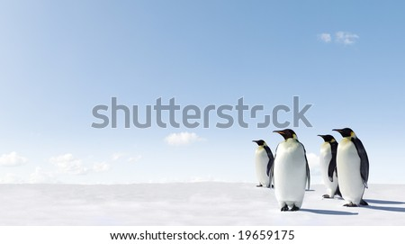 Emperor Penguins in Antacrctica - stock photo