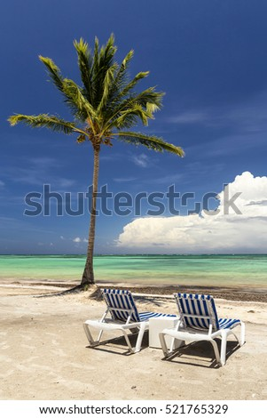 Empty arm chairs and a palm tree in a tropical caribbean beach with a blue sky on the background as a vacation concept