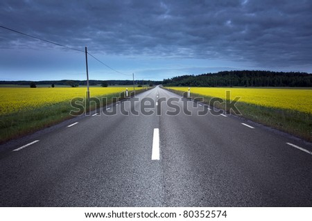 Empty asphalt road at night, crossing a rapeseed field - stock photo