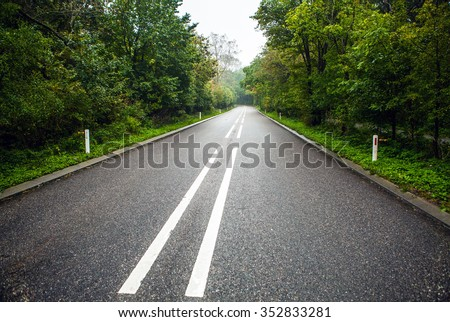 Empty asphalt road in wood