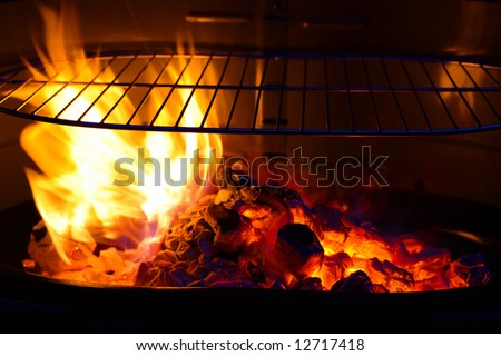 empty Barbecue Grill with flame and burning embers BBQ, colorful