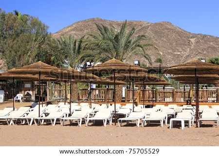 Empty beach chaise lounges,  umbrellas and palm trees on a sandy beach of the Red sea on the mountains background - stock photo