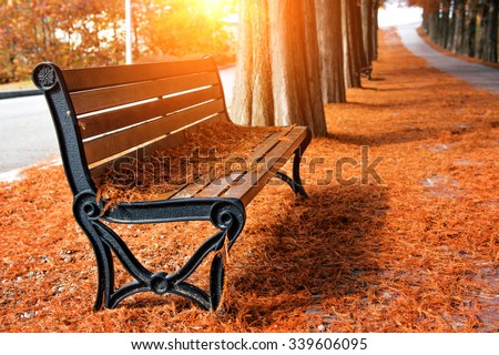 Empty bench in the autumnal park - stock photo