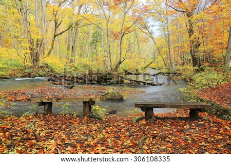 Empty benches by mysterious Oirase Stream flowing through the autumn forest in Towada Hachimantai National Park in Aomori Japan ~ Beautiful scenery of Northeastern Japan - stock photo
