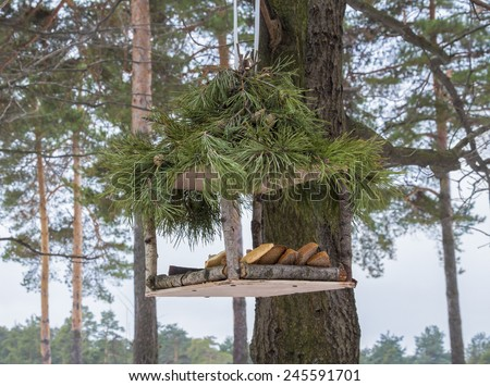 Empty bird feeder - stock photo