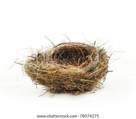 Empty bird's nest, isolated on white - stock photo