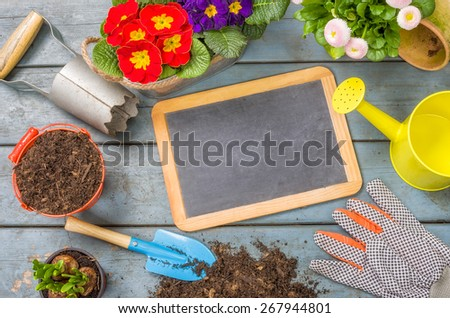 Empty blackboard on a plant table - stock photo