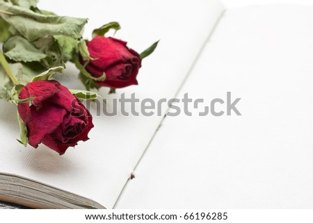 Empty book with room for text or images with two dried roses