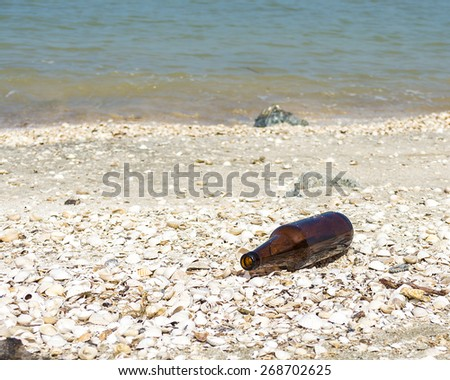 Empty bottle at sea shore - stock photo