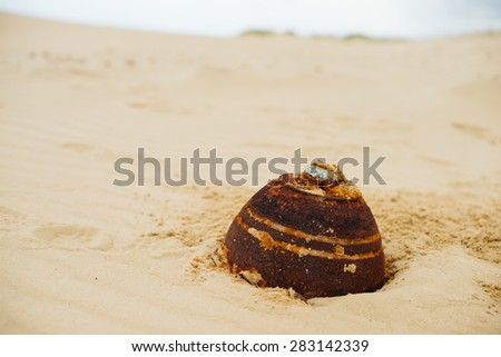 Empty cans in the sand in the desert, the lack of water and drought - stock photo