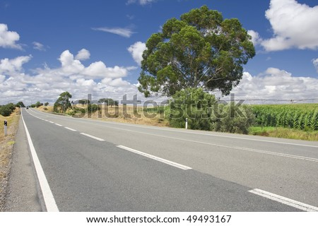 Empty countryside road among trees and fields at summer day (Freedom concept) - stock photo