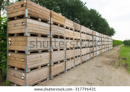 empty crates for the apple and pear harvest in the betuwe, netherlands - stock photo