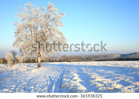 Empty cross-country ski track and winter meadow in Table Mountains in Poland Sudetes by sunrise. - stock photo