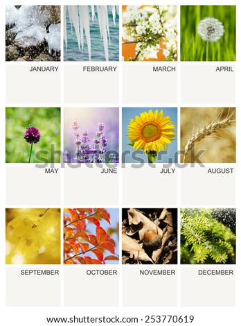 Empty Every year Calendar Template With Seasonal My Own Photos - stock photo
