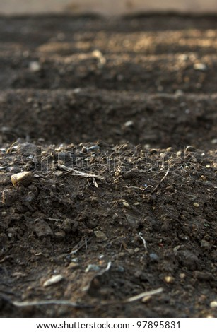 empty garden rows in a raised bed ready for planting - stock photo