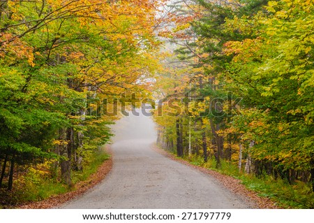 Empty gravel country road during the fall foliage season, Stowe, Vermont, USA - stock photo