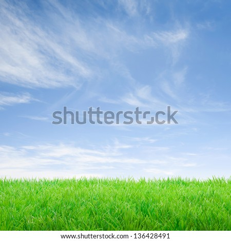 Empty green meadow over a fresh blue sky. - stock photo