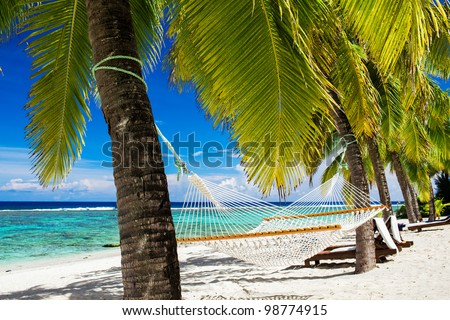 Empty hammock between palm trees on tropical beach - stock photo