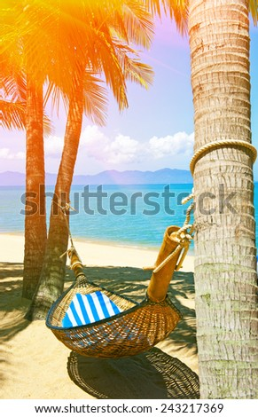 Empty hammock between palms trees - stock photo