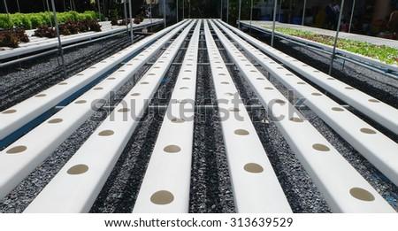 Empty hydroponic farm. - stock photo