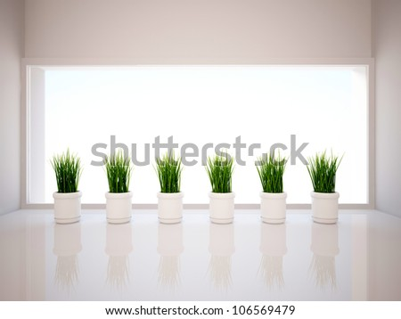 empty interior with plants - stock photo