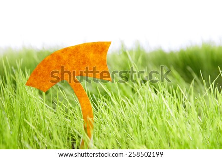 Empty Label For Copy Space Or Free Text Or Your Text Here On Green Grass Spring Summer Sunny Feeling - stock photo