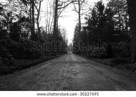 Empty lane and bare threes in black and white, Stuttgart, Germany - stock photo