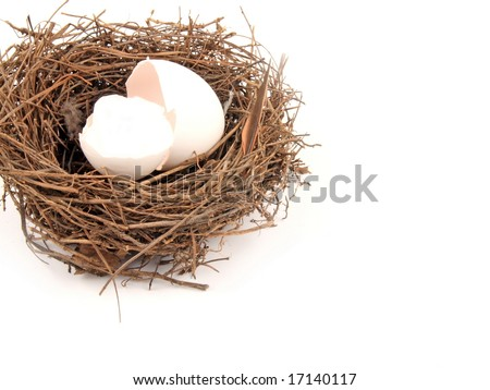 empty nest syndrome stock images royalty free images vectors shutterstock. Black Bedroom Furniture Sets. Home Design Ideas